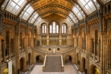 Museum of Natural History, London 148307051