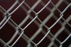 Closeup of chain link fence 87710200; Immigration Penalties: Employers